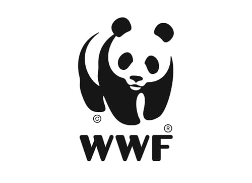 Panda WWF supports National CSR Awards