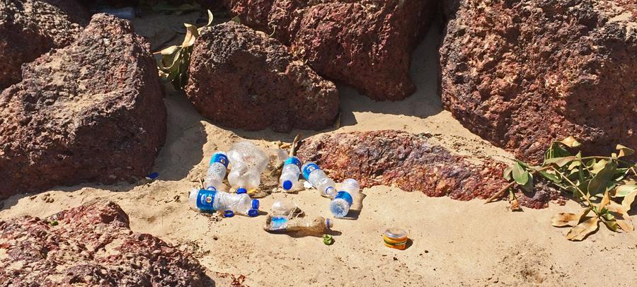 UN reports true impact of plastics pollution