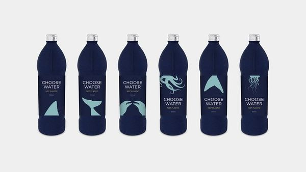 Plastic-free water bottle makes a splash